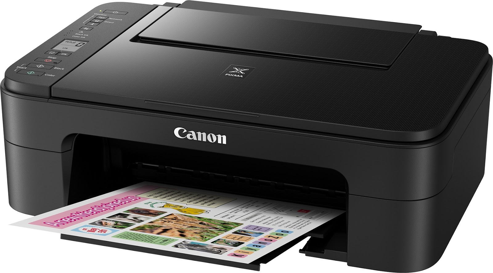Setting up Canon Printer Via Canon IJ Setup Without The Help Of ...