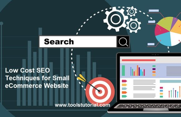Low Cost SEO Techniques for Small eCommerce Website